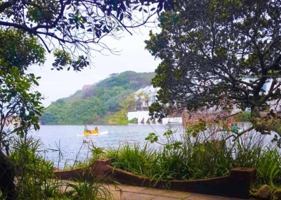 Vaneshree-Naidoo