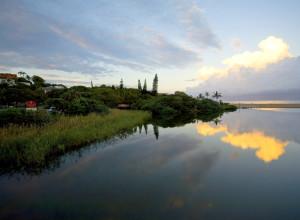 2011 lagoon